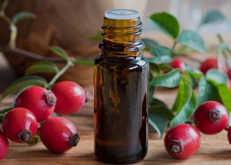 bottle of oil surrounded by rosehip