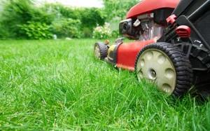 electric push mower