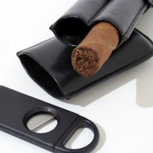 A cut cigar in a travel tube