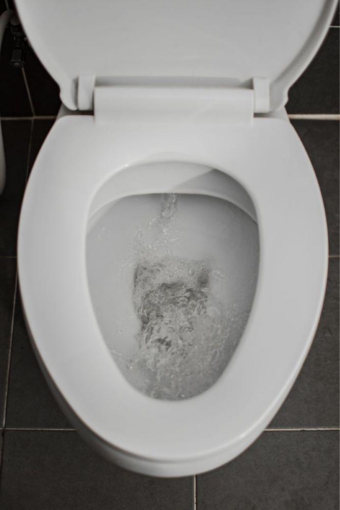 Clean flushing toilet