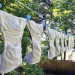 Cloth diapers hanging on a line