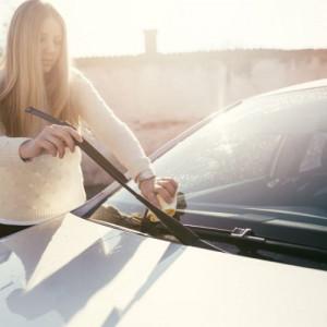 keep clean the car